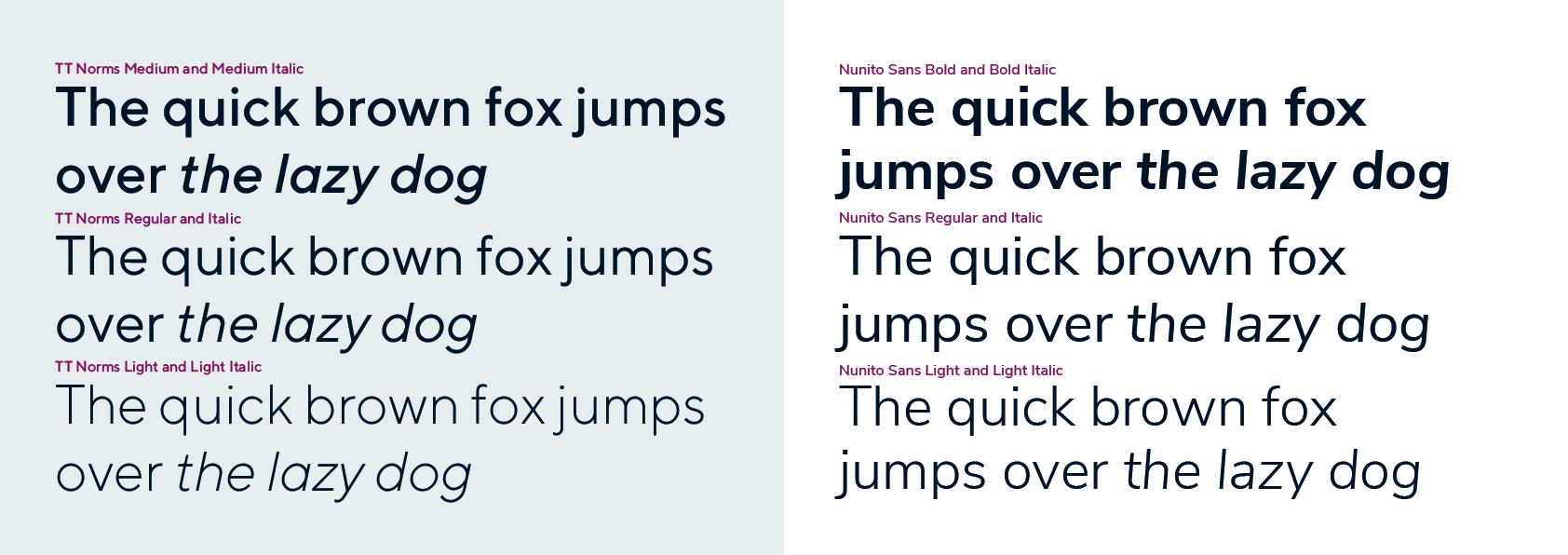 Nunito Sans typeface-100