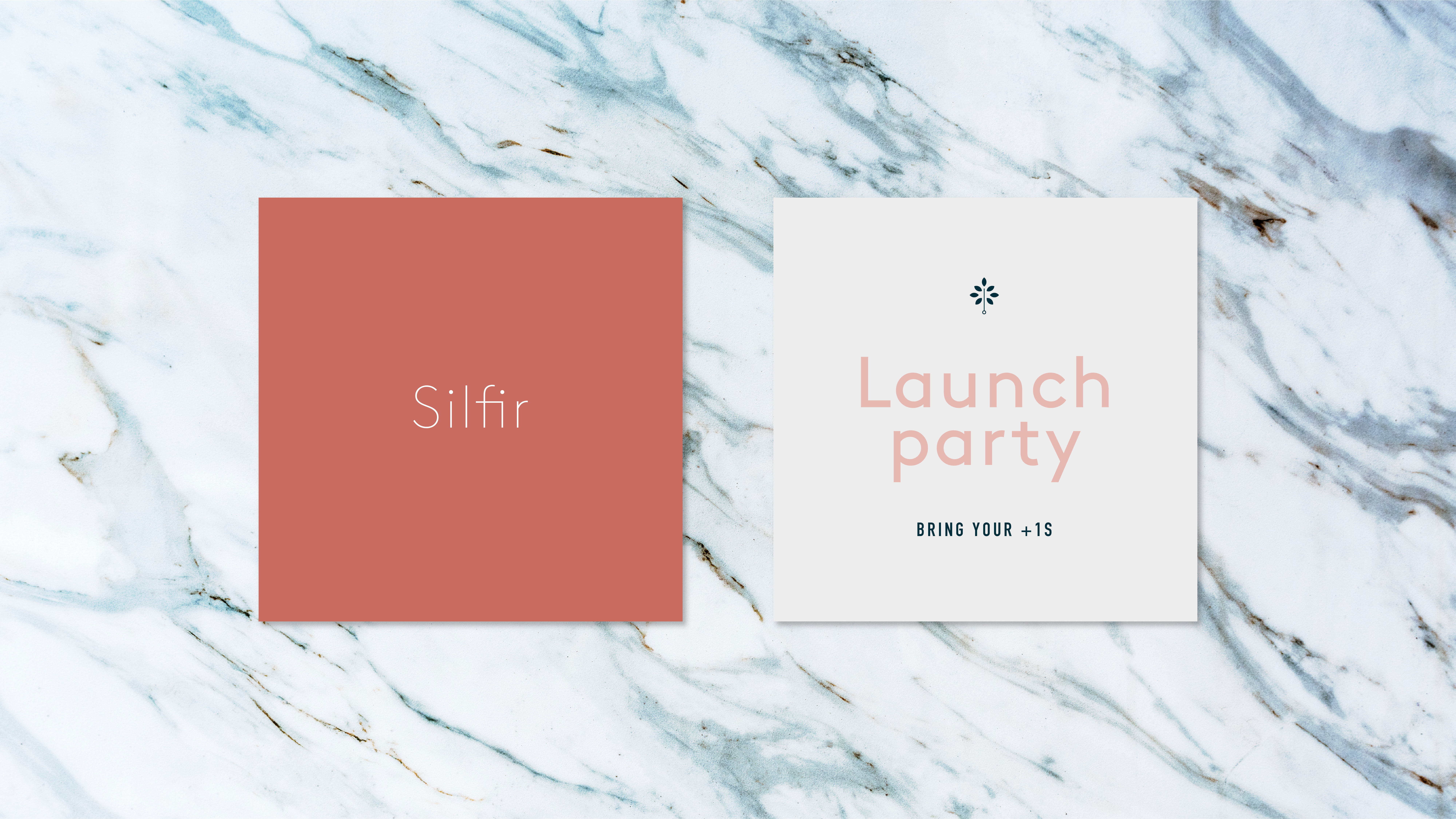 Silfir launch party