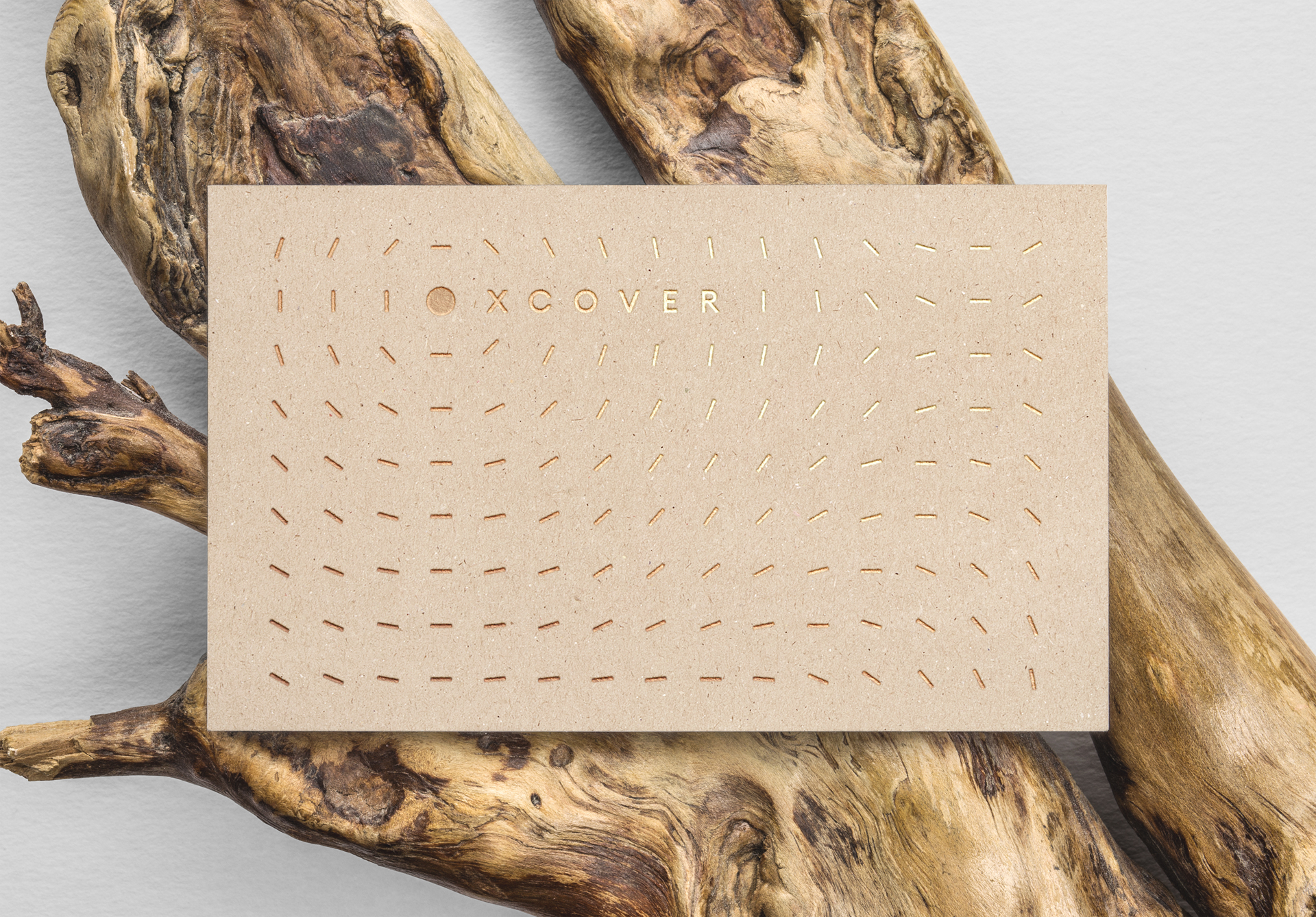 XCover_gold_foil_invitation-r3